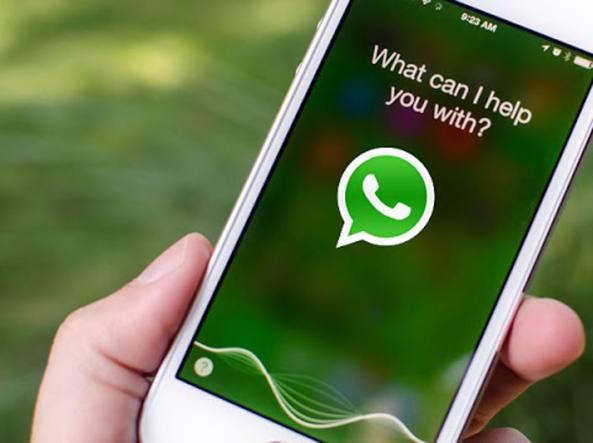 WhatsApp: su iOS Siri legge i messaggi in arrivo